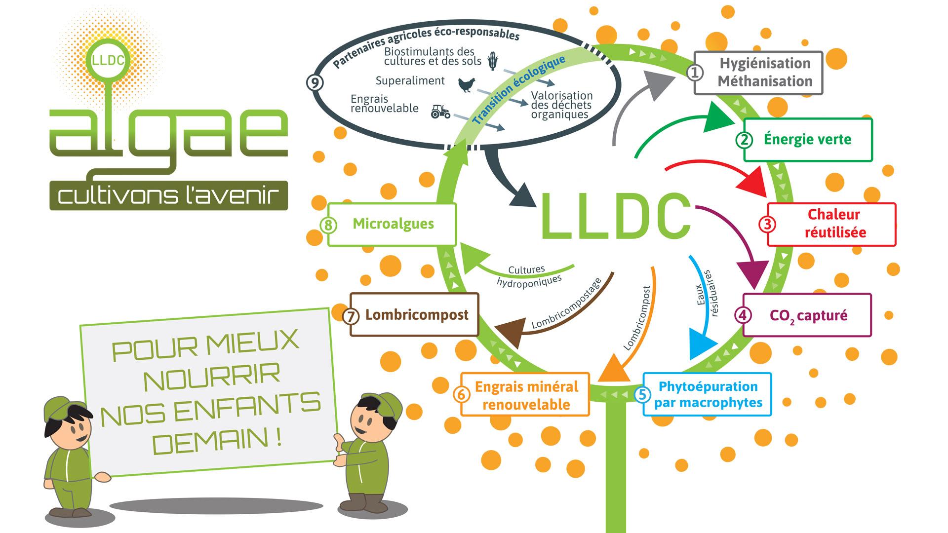 lldc_algae_cercle_vertueux_pour_mieux_nourri_nos_enfants_demain